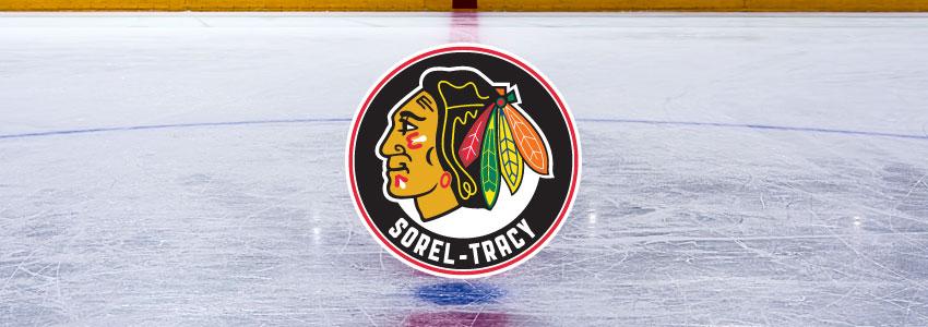 hockey-epervier